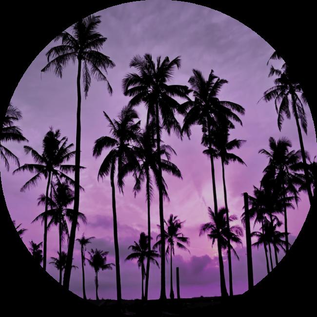 Nuckees Original Generic Grips (Tropical Sky)